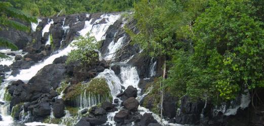 surinam tourisme - Image